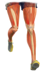 Leg Injury Treatment