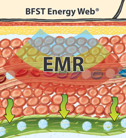 King Brand® BFST® Energy Web® EMR Heating Blood Flow Stimulation Therapy Diagram