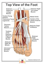 Foot Injury Treatment